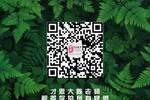 上海大学上海电影学院2020年硕士招生复试工作方案