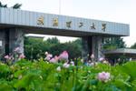 直播预告:武汉理工大学招生办公室副主任张璐详解高考报考政策