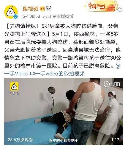 5岁男孩被狗咬伤满身是血,父亲光脚抱娃送医,脸上血痂吓坏医生