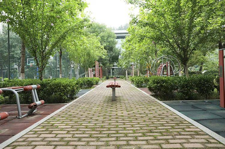 京美考研 | 终于等到你 --央美城市设计学院研究生考试招生简章