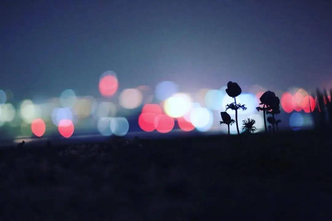 如何拍出漂亮的梦幻光斑?