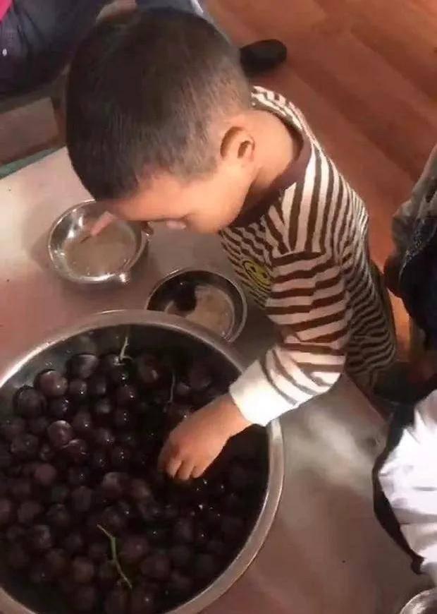 """【孩子】""""实在宝宝""""左手拿果右手数数,萌翻了,老师让每人拿三个葡萄"""
