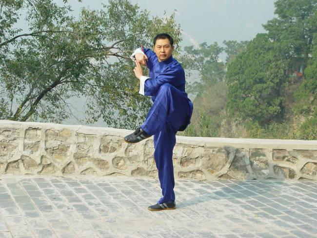北京体育大学武术专家助力全球太极拳网络大赛