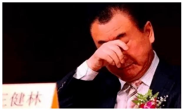 王健林:2020最惨的人