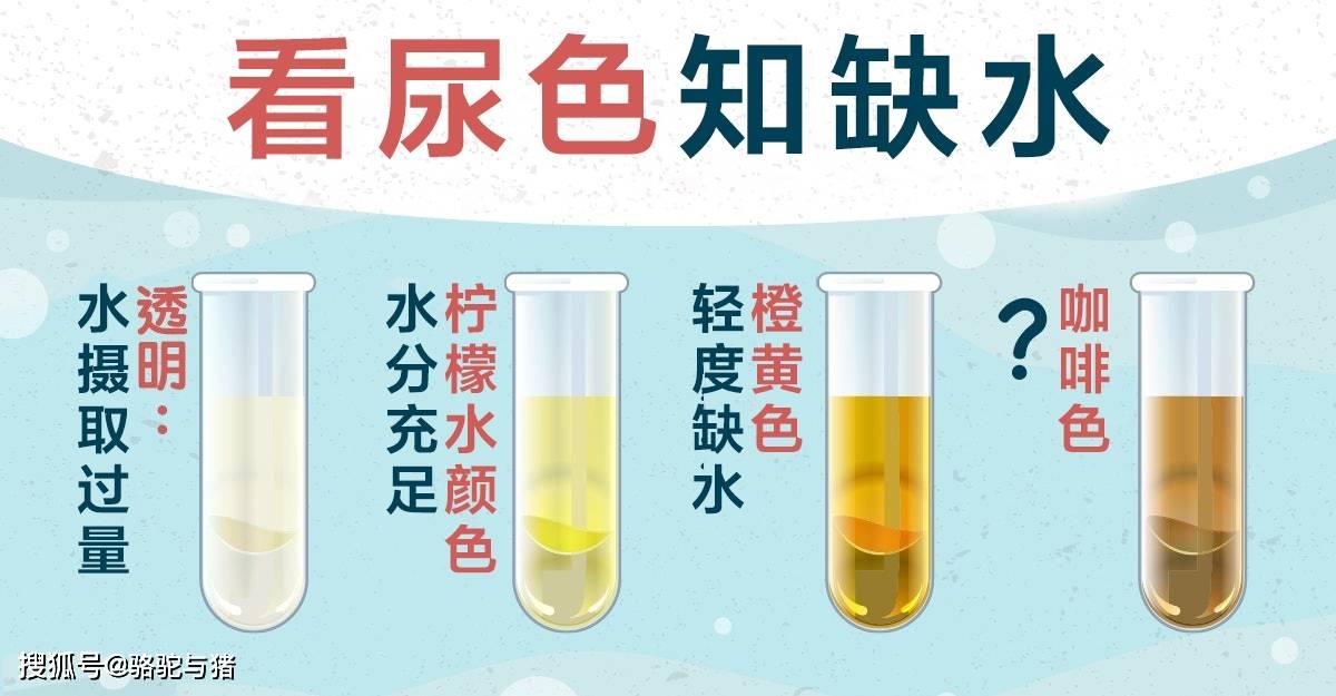 缺水8大症状,营养师教你:看尿色判断身体缺水情况