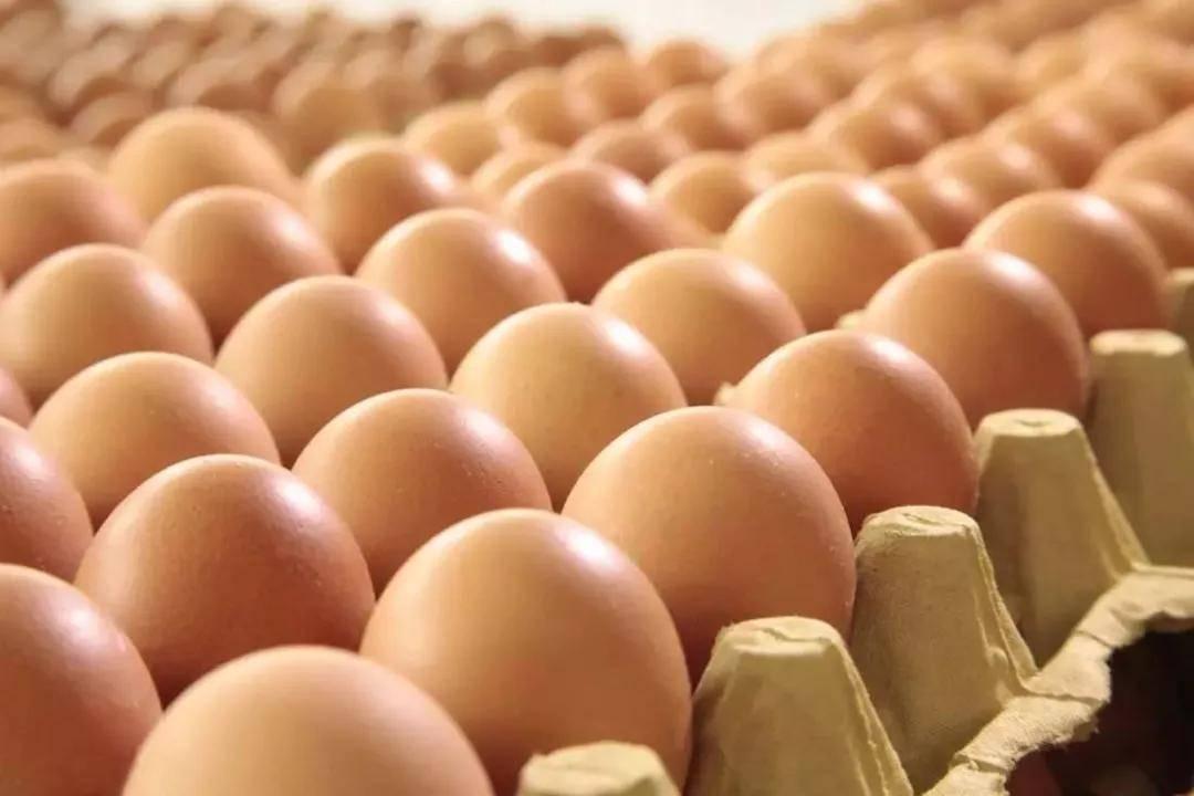 先有鸡还是先有蛋,今天终于揭晓………..