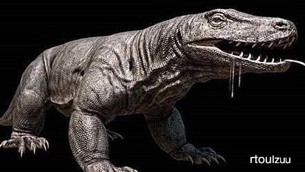 原创 称霸澳洲百万年的巨蜥,体长七米重达一吨,灭绝缘故原由让人无奈
