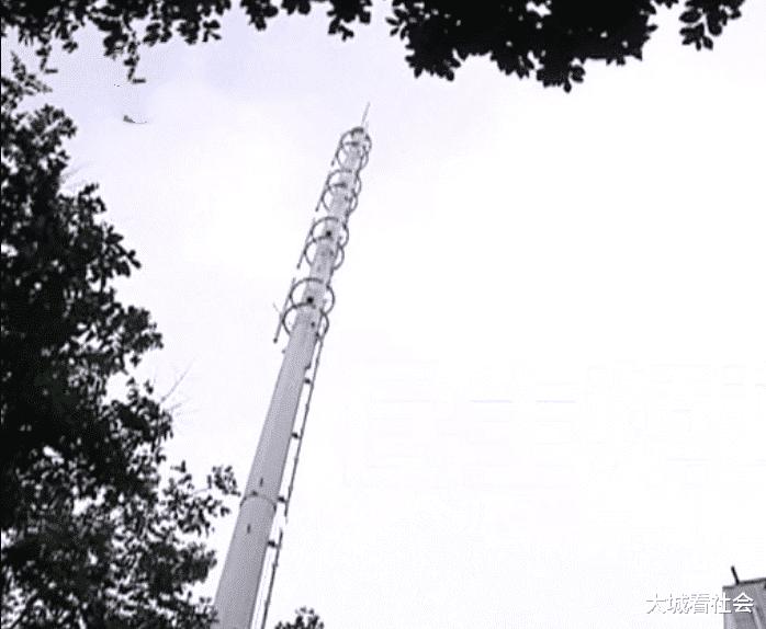 楼外10米要建基站塔,居民搭帐篷轮流值守:辐射大不能装
