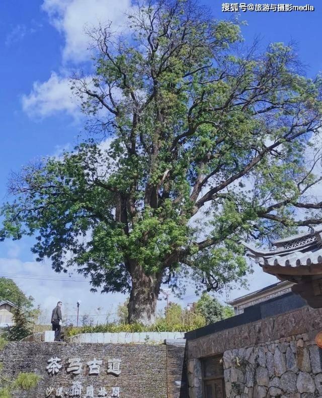 原创             茶马古道上最后一个古镇,大理千年历史的见证,真正的世外桃源!