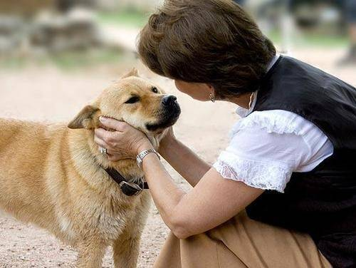 Medicalxpress:新冠康复后又出现幻觉,英精神病专家称自己听见狗在说话