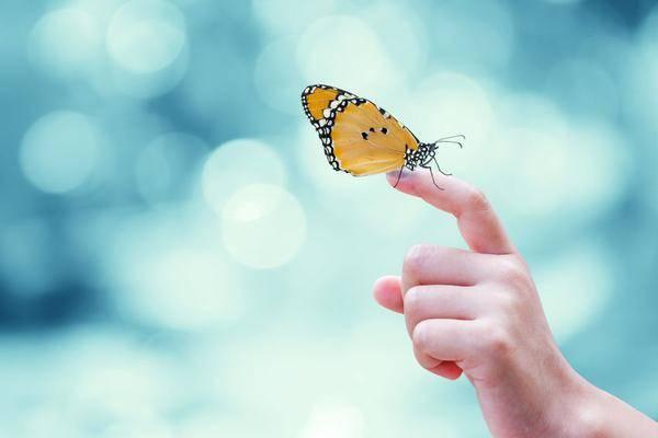 """蝴蝶宝贝:名字虽美,但却是一种不能""""碰""""的罕见病!有些孩子被中招"""