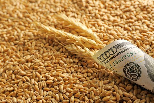 市场上有这样一种现象,一斤粮食的价格
