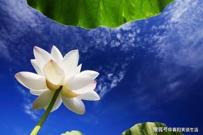http://www.weixinrensheng.com/sifanghua/2807710.html