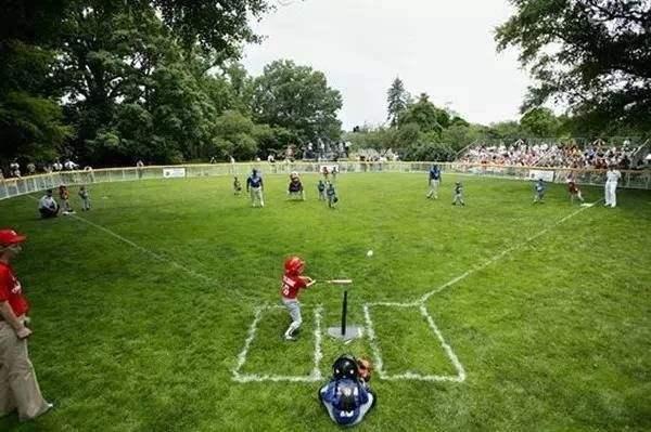 论体育的双重属性 体育本质属性的是