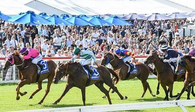 凡泰马术围栏:澳大利亚墨尔本百凯南赛马场将由Sportbet冠名