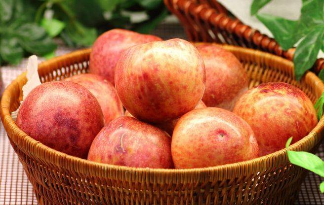 苹果和此物一起吃,睡眠越来越好,血管也畅通无阻,皮肤更细腻