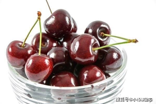 秋季养生,常吃四餐,解毒抗衰老,维护血管,增强抵抗力。 最养生的食物