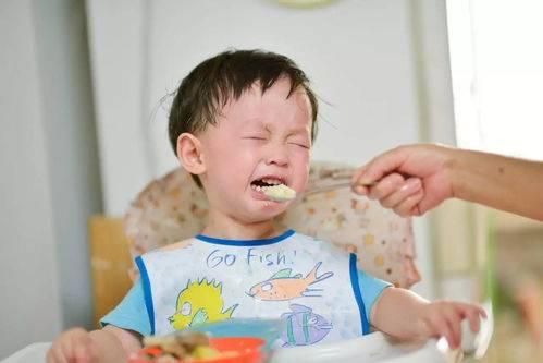 宝宝不爱吃饭,胃口差?别担心,教您几招让孩子爱上吃饭!——湘曦源