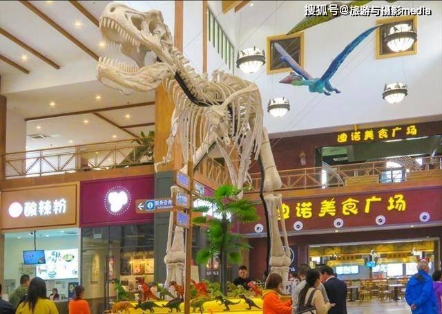 我国唯一恐龙主题服务区,仿佛走进侏罗纪世界,电梯都是骨头装扮