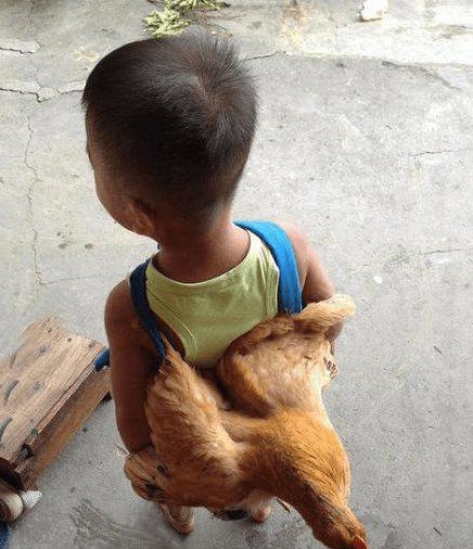 开心搞笑一刻:小朋友,你想背着母鸡去哪里?