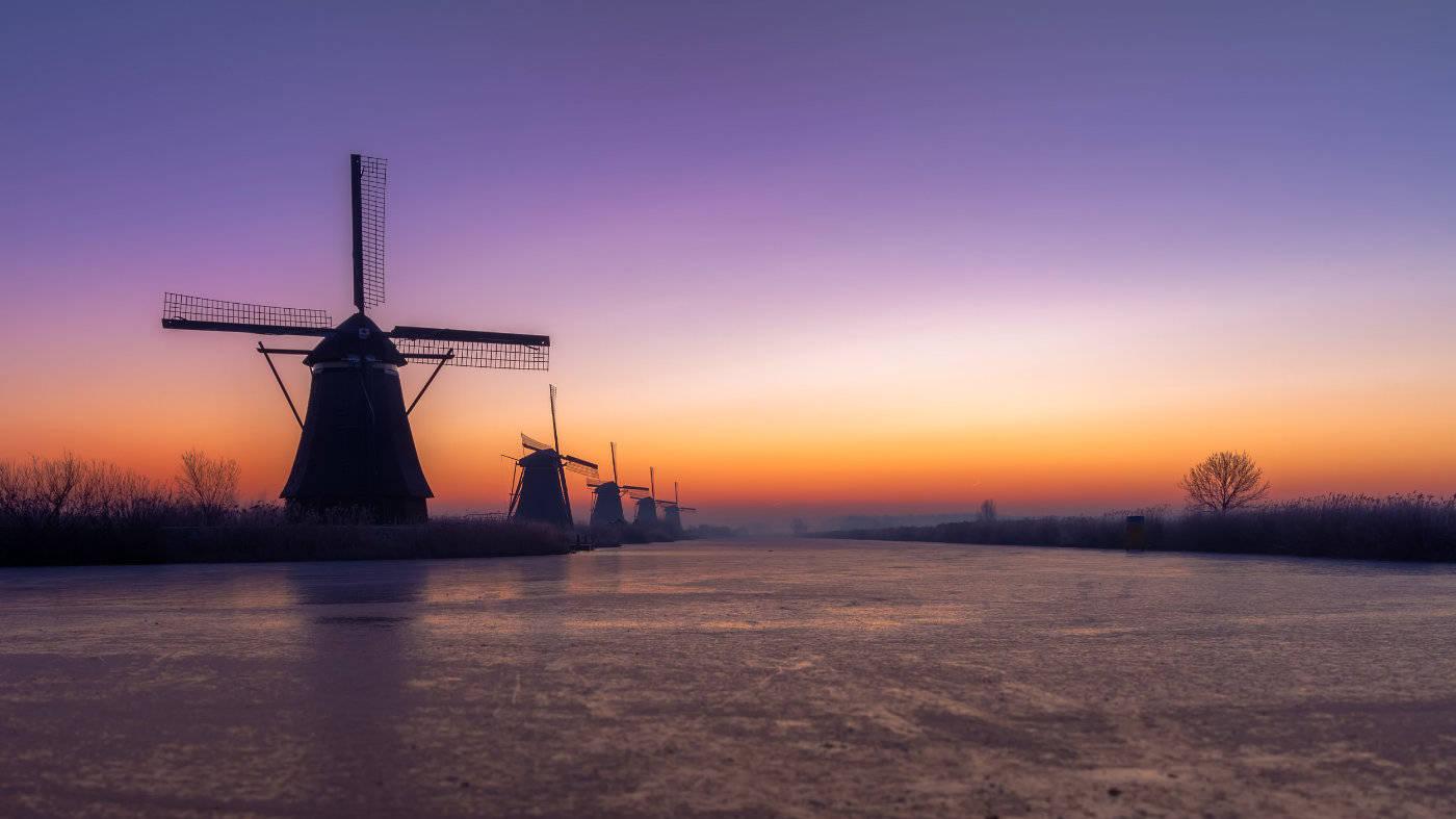 原创             荷兰大学全英文授课课程超过2000 门,会计研究生不接受跨专业申请