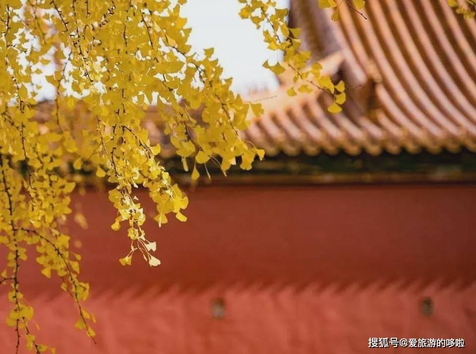 8个地方告诉你,中国的秋天有多美