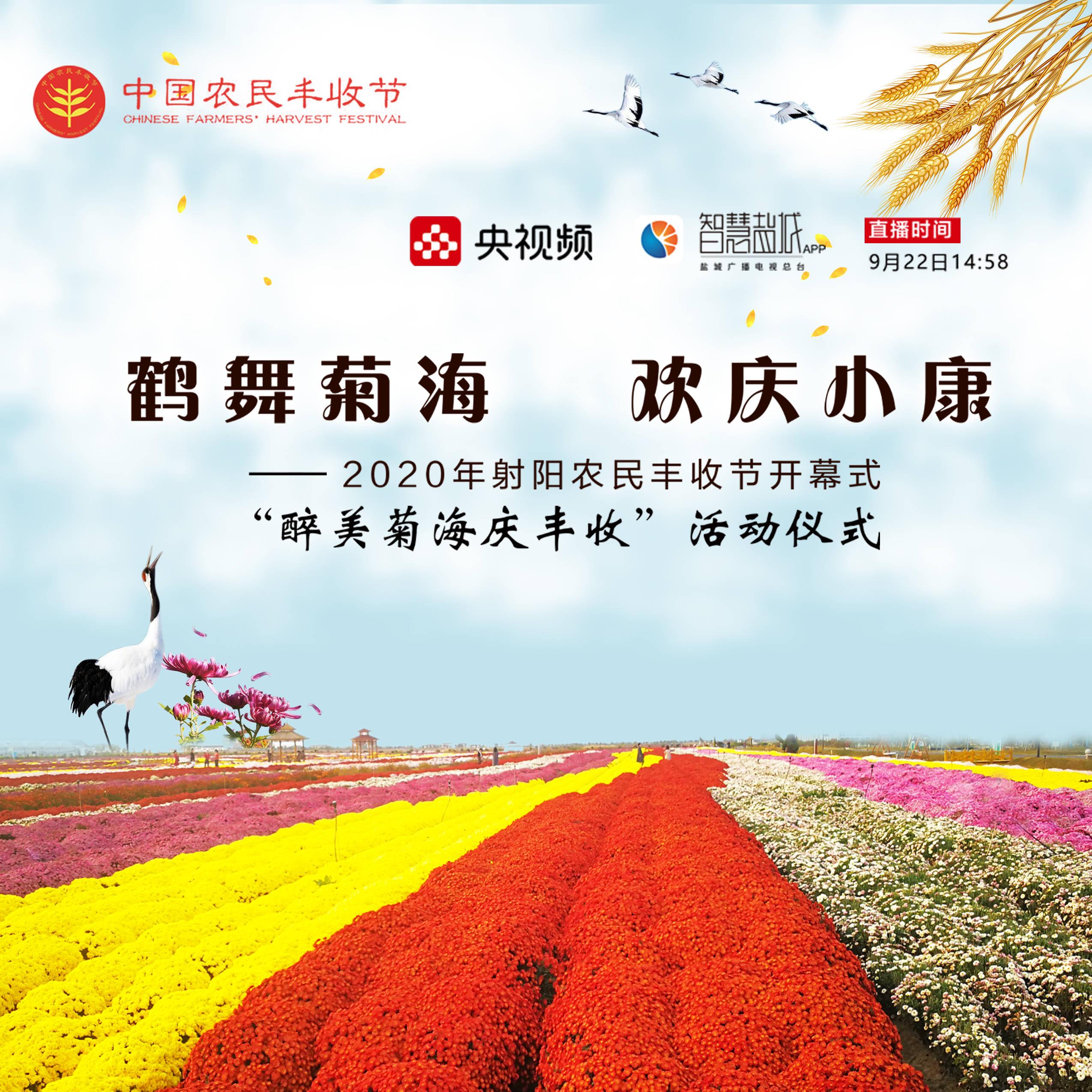 芬芳时节的金秋收获--鹤乡喜迎中国农民