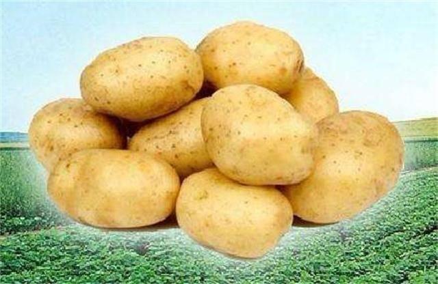 适合秋季养生吃的食物,坚持食用,排毒抗衰,美容养颜,呵护肌肤