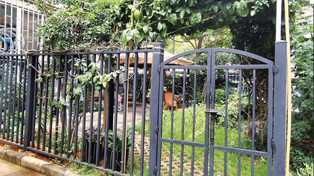 昆明一小區業主反映:一樓住戶把綠地變私家菜園!城管:能拆的都拆了