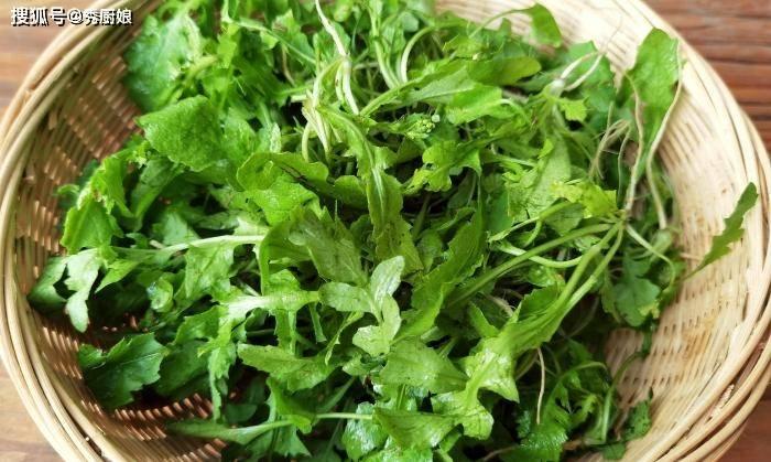 秋天 正是吃这道菜的时候 维生素C含量极高 钙含