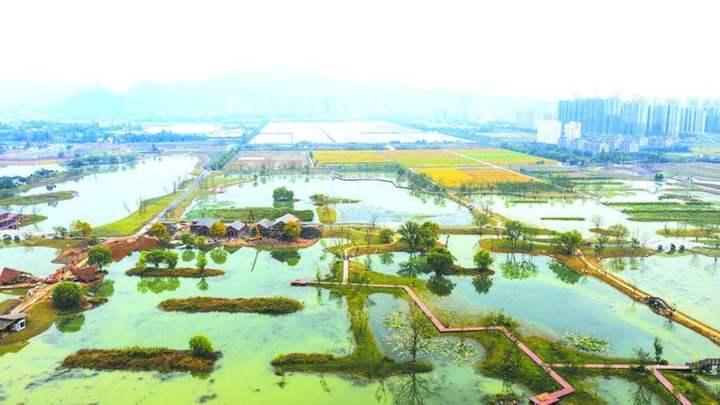 7000个篮球场那么大 富阳阳陂湖一期免费开放