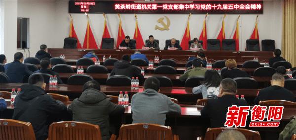黄茶岭街道组织全体党员学习传达党的十九届五中全会精神