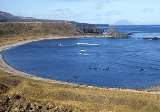 俄军大批坦克开赴千岛群岛,日本向美求救有用吗?