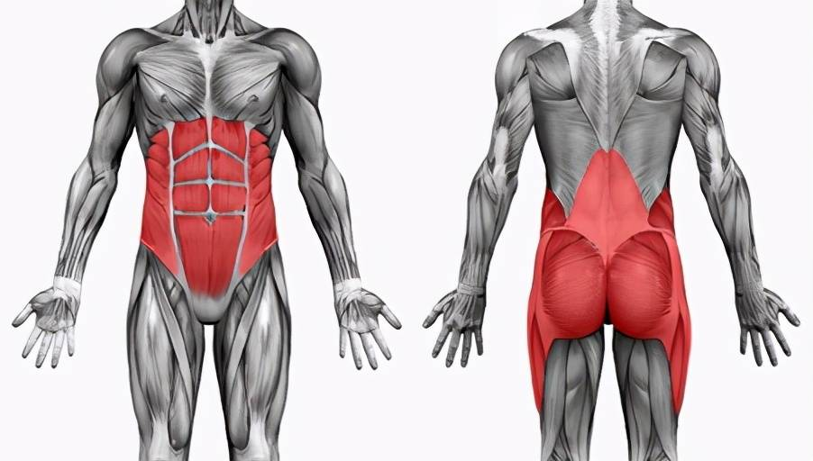 核心力量的训练方法:3个动作帮你强化核心肌群!