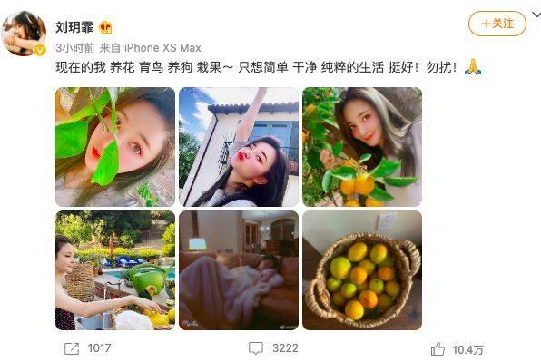 刘雨欣晒生活照疑回应张檬道歉:养花育鸟养狗栽果挺好