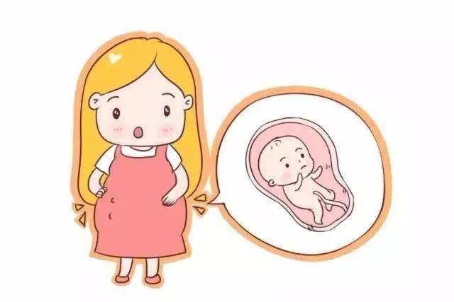 宝宝胎动几时有?什么规律?