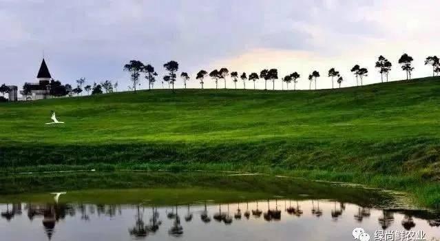 贵州绿尚鲜农业与大山博岚农旅开发公司修文放马坪农文旅示范项目签约成功