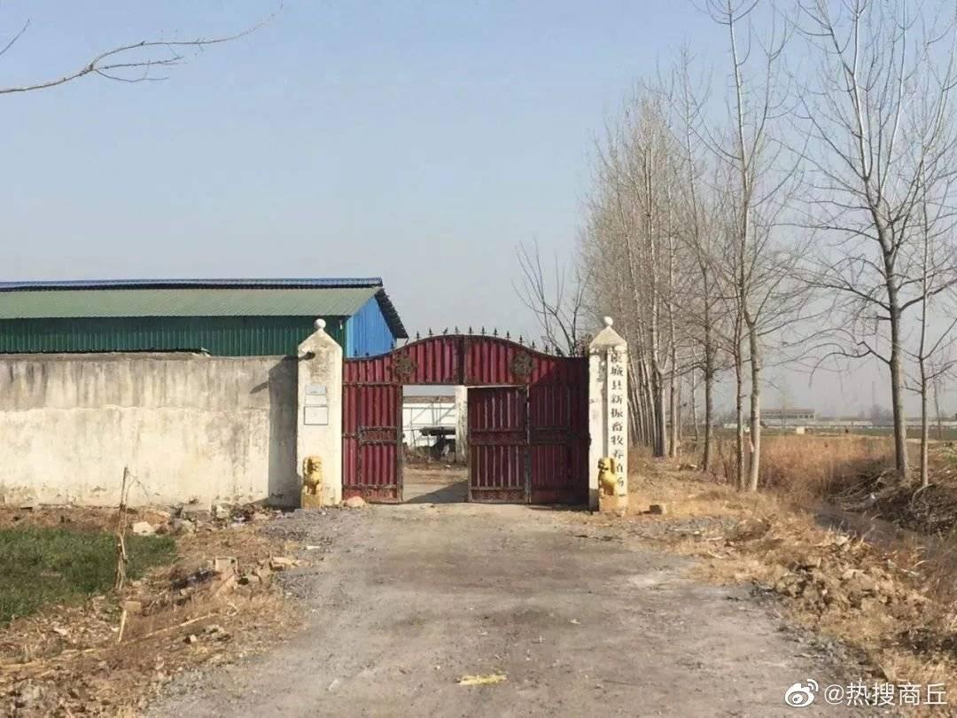 网传虞城县大杨集镇一造纸厂污染环境 影响附近村民生活