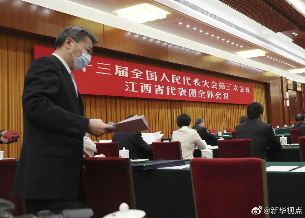 出席十三届全国人大三次会议的代表团分组审议