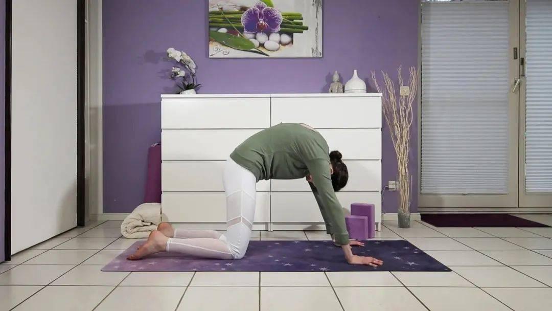 """""""筋长一寸寿延十年"""",10个拉伸瑜伽体式在家练,超舒服!_身体 高级健身 第6张"""