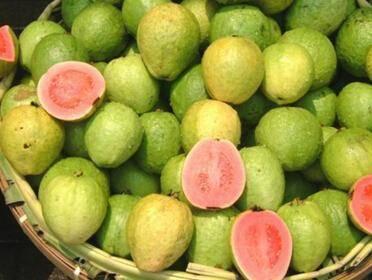 """吃水果能越吃越瘦?营养师推荐你吃""""芭乐"""",两个时间是减肥利器 减肥误区 第3张"""