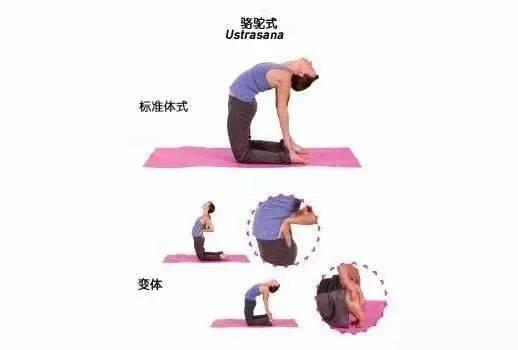 初学者一定要知道,这25 个常见瑜伽动作细节必须牢记 减肥窍门 第26张