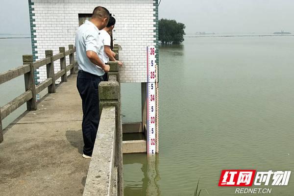 洪峰过境,汨罗三个垸区接近警戒水位