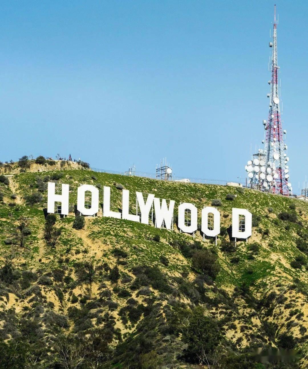 好莱坞强制掰直gay鲜肉男星,配新娘逼迫形婚,这是人干事?