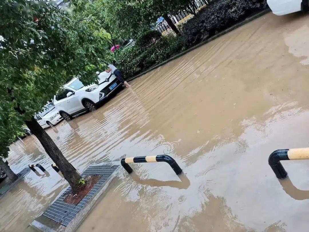 别出去就行了!江夏,这些道路都被淹了,无法