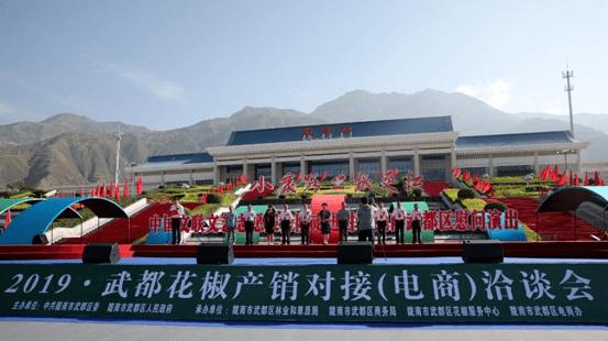 武都gdp_陇南武都区实现旅游发展新突破GDP占比5年增长3.67%