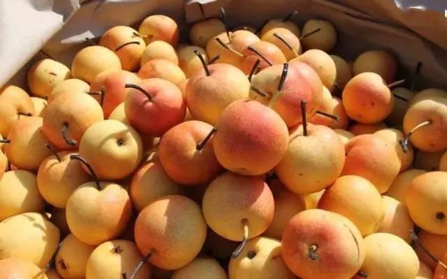 另一方面国产水果品质不佳 柬埔寨救国党对华