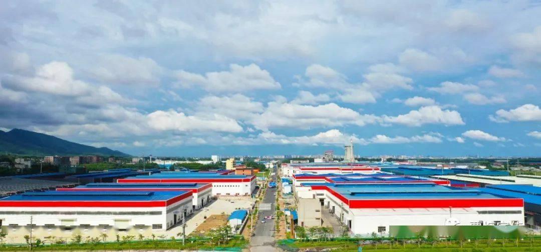 广西貴港木材行业上半年产值突破190亿