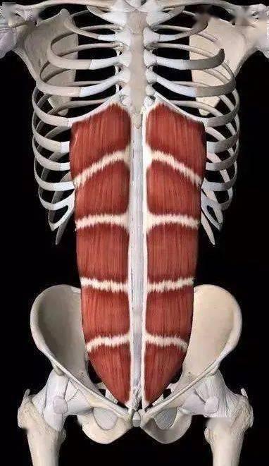 拍照时如何让腹部线条更清晰?