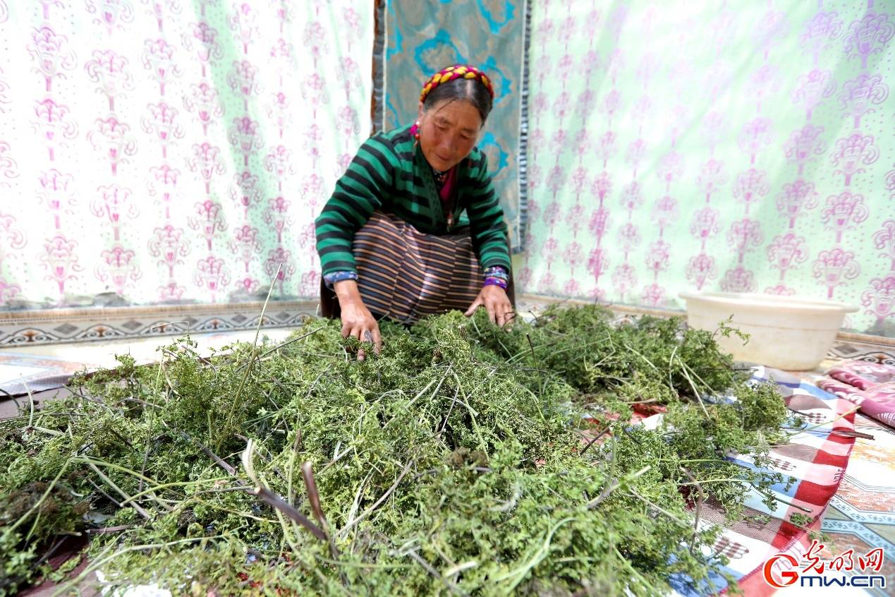西藏山南市扎杂村:住在高原上的一所好房子里